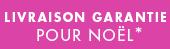 livraison-garantie-noel